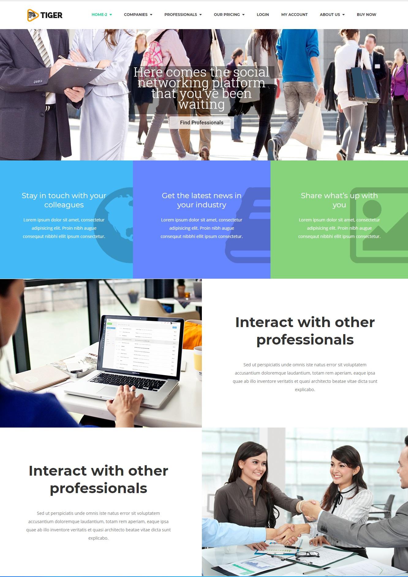 Mẫu website giới thiệu công ty-Tiger