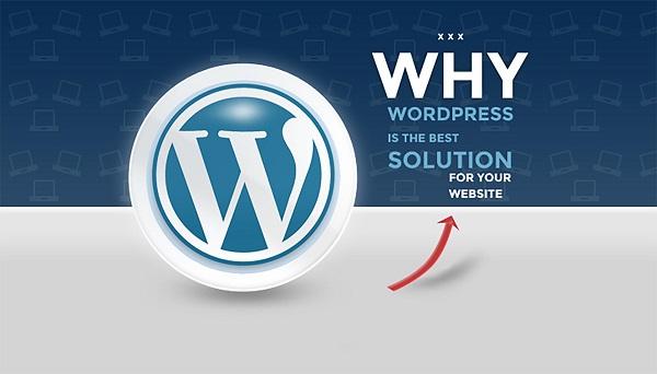 Hướng dẫn thiết kế web WordPress responsive toàn tập từ A đến Z 3